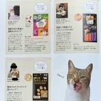 猫とふたり暮らし~evaとaiaiの日常~