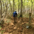 『日本百名山 荒島岳へ☆その2 すばらしい山頂♩』の画像