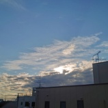 『【写真】 冬のある日  Xperia 5 作例』の画像