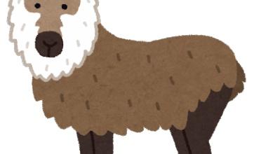 【悲報】ニホンカモシカさん。鹿の仲間じゃなかった