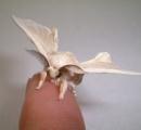 蚕にカーボンナノチューブを食わせるとより強靭な糸を吐き出すことが判明