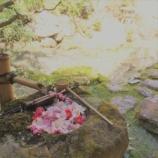 『柳谷観音楊谷寺さまで竹箸作り体験をしました!』の画像