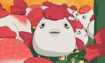 【衝撃】金魚は体内でアルコールを作れるらしい!!これは…要するにどういうことなんだ…
