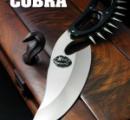 時速100キロで運転中の車内にコブラ、そのままナイフで格闘戦に