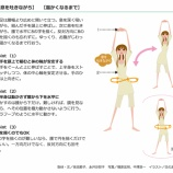 『子宮周りや骨盤内の血流に良い運動はじめました / #温活大作戦!!』の画像