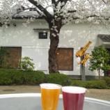 『'2012お花見🌸①~京都・伏見の酒蔵めぐり(月桂冠~黄桜)』の画像