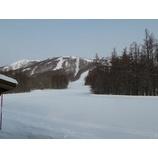 『新雪積もりました。プチパウダー楽しめます!』の画像