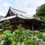 『いつか行きたい日本の名所 法金剛院』の画像