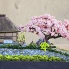 『FUJIIさんのジオラマ「おらんちの桜満開だ」』の画像