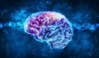 「生きた脳」の永久保存で人類は不死を手に入れるのか