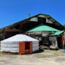 ゲル宿泊可能なモンゴルを体験できる国内スポット