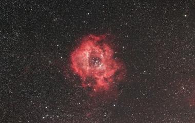 『真紅ののバラの花飾り(ばら星雲)』の画像