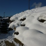 『寒ーい朝』の画像
