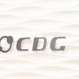 『5%ルール大量保有報告書 CDG(2487)-タワー投資顧問(処分売り)』の画像