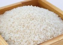 なんで米って茹で料理ないの?