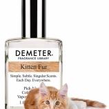 『子猫の首の匂い』の画像