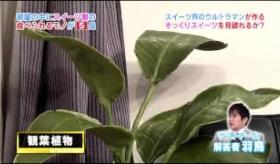 【テレビ】   これがお菓子!? 日本のテレビ番組で お菓子の 靴やドアノブや机のオブジェが 本物と全く見分けがつかないと話題に。   【海外の反応】
