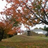 『晩秋』の画像