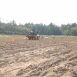 『紅芋の収穫〜弥栄梅本農場にて〜』の画像