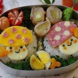 『キノコ弁当』の画像