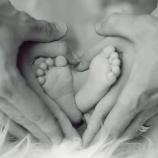 『自立ってなんだ? ~理想の親、理想の子供~』の画像