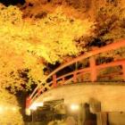『河鹿橋!!』の画像