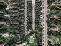 中国「どうですかこの緑に囲まれたマンション!」 客「廃墟かよ」 「ていうか、蚊!蚊がすげえよ」
