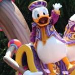 Disney magical Diary!