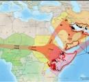 バッタの大群、インド侵略 食物を食い尽くし、さらに東方へ侵攻する動き
