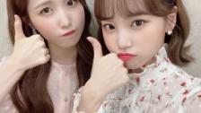 IZ*ONEチェウォン&仁美、「Stars Top Recipe at Fun-Staurant」に出演
