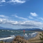 wind& tatami