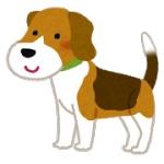 【イイハナシダナー】おぼれる老犬を救助 銀行員がスーツのまま川の中へ