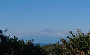 伊豆半島を下田に向かってドライブ