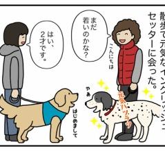 エフ漫画『長生きの秘訣』