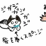 猫ちゃまら