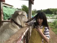 【乃木坂46】与田祐希さん、食べられるwwwwwwww