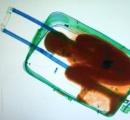 8歳の息子をスーツケースで密入国させようとした父親に罰金刑92ユーロ(約1万2000円)(X線画像あり)