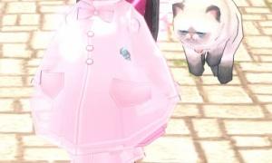 トーテムポール猫…