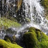 『滝と精霊』の画像