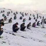 『アフガニスタンの大学入試』の画像