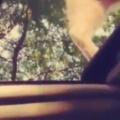 ネコが車の上にいた。サンルーフを開けてその様子を撮ってみる → こうなった…