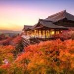 日本さん、観光誘致をガチった結果とんでもないことになる