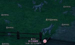 巨大白オオカミの取り巻きが柵の内側に沸いたwww