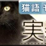 クイズRPG 魔法使いと黒猫のウィズ 攻略のススメ