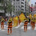 2017年 第44回藤沢市民まつり その26(神奈川県立湘南台高校吹奏楽部)