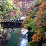 山梨県・昇仙峡の紅葉