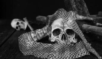 『蛇田』『差し入れが多くなった理由』『いつまで』他 何でもいいから怖い話を集めてみない?