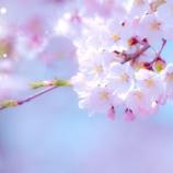 『3月4月といえば、お引越しシーズン!』の画像