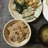 『酵素玄米がおいしくて、つい食べ過ぎの日々』の画像