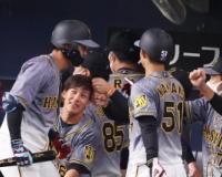 阪神板山が代打犠飛&ストライク返球でアピール